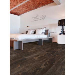 coast-wood-24852